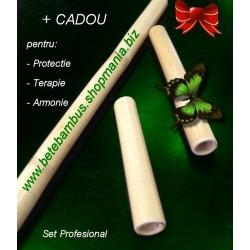 Set Profesional 3 Bete Bambus Special finisate pentru orice tip de MASAJ 60 cm + 30 cm + 20 cm - diametru 2.3 -3.3 cm + CADOU