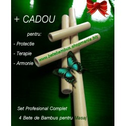 Set Profesional Complet 4 Bete Bambus pentru Masaj 60 cm + 40 cm + 30 cm + 20 cm - diametru 2.3 - 3.3 cm + CADOU