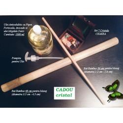 PACHET COMPLET Special pentru Masajul Anticelulitic (2 x Bete Bambus + Ulei Anticelulitic 1000 ml + Rola JAD Masaj)
