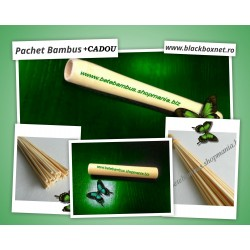 PACHET BAMBUS pentru Masaj ( Bat Bambus 20 cm + Bat Bambus 40 cm + 2 x Tapotament 70 buc Bambus pentru Masaj)
